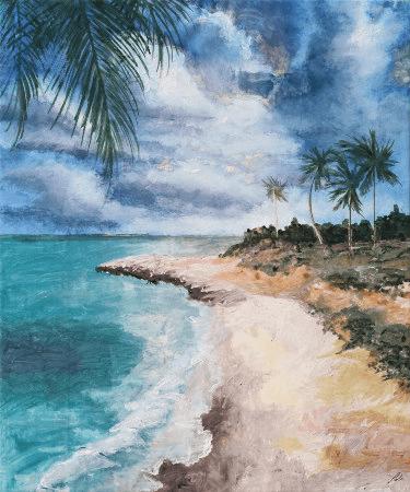 Florida Beach Cove